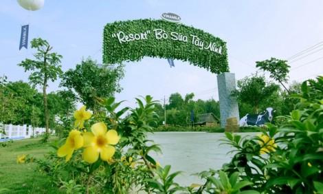 Resort bò sữa Vinamilk – điểm check-in hấp dẫn mới ở Tây Ninh