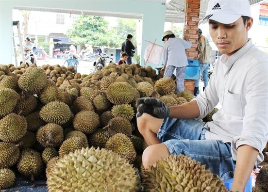 'Ket' o cua khau vao Trung Quoc, sau rieng cho dau moi van giu duoc gia cao