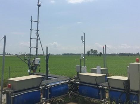 Đặt trạm quan trắc trên ruộng lúa 'bắt bệnh' biến đổi khí hậu