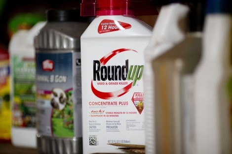 Bayer phải bồi thường 2 tỷ USD cho người dùng thuốc diệt cỏ bị ung thư