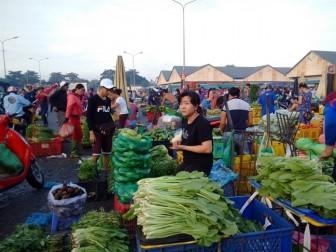Nhiều nông sản Việt bị các nước trả lại, hàng trong nước có an toàn?