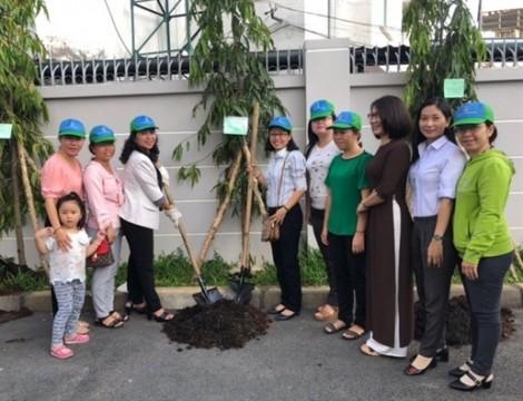 Cây xanh cho công sở và mảng xanh ở từng hộ gia đình