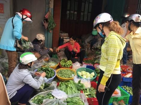 Vì sao rau gia vị đang tăng giá gấp đôi?