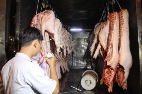 Khởi tố vụ giết mổ gia súc nhiễm tả heo châu Phi