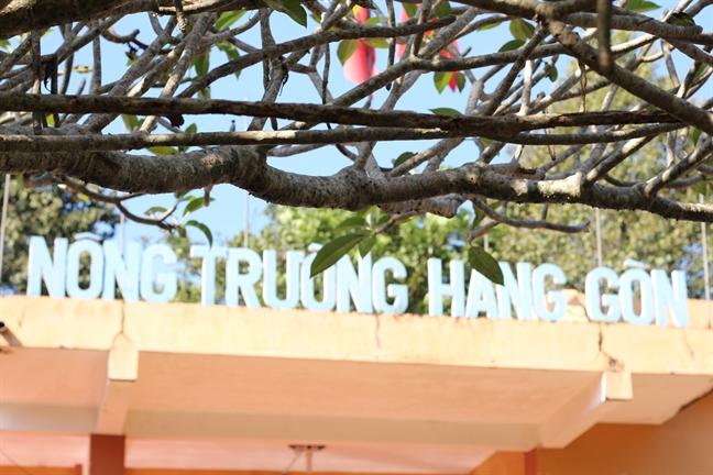 Ghe nong truong cao su Hang Gon ngam mieng nui lua
