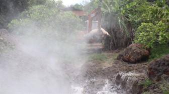 Bình Phước: Tiêu hủy hơn 100 con heo dương tính với dịch tả heo châu Phi