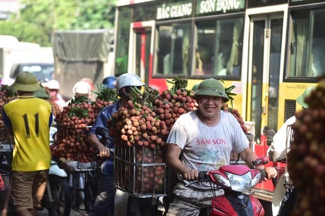 Can canh cho vai thieu doanh thu 3.000 ty dong moi nam tai Bac Giang