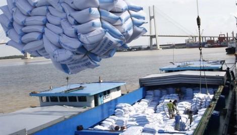 Gạo Việt Nam xuất khẩu đi Trung Quốc bị trả về