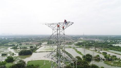 Chính thức vận hành đường dây 220kV Nam Sài Gòn - quận 8