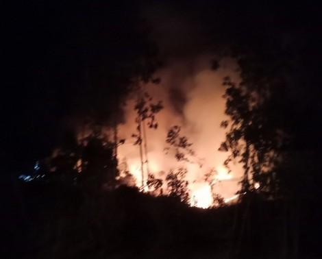 Quảng Ngãi: Dân đốt thực bì làm cháy rừng suốt một ngày đêm