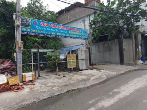Chủ vựa tôm hùm Sài Gòn giăng bẫy lừa tiền hàng loạt mối hàng tại các tỉnh