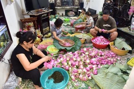 Trà sen Tây Hồ giá 10 triệu đồng/kg có gì đặc biệt?