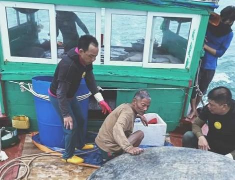 Đi tắm một mình, ông già 65 tuổi ôm phao trên biển suốt đêm