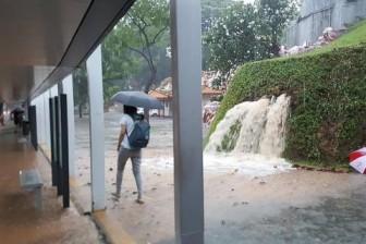 Đông Nam Á chịu ảnh hưởng nhiều từ dịch chuyển khí hậu