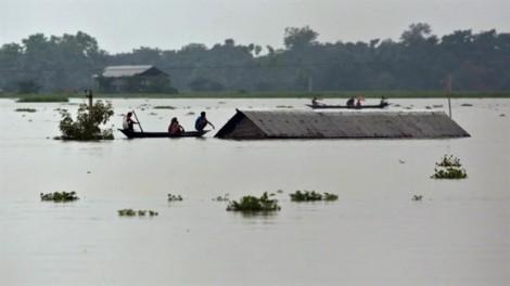 Lũ lụt ở Nam Á, hàng triệu người chạy nạn