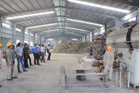 Dân bãi rác Khánh Sơn băn khoăn trước công nghệ 'điện rác' xuất xứ từ châu Âu