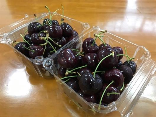 Cherry chua day 300.000 dong/kg, nhieu noi khong du hang ban