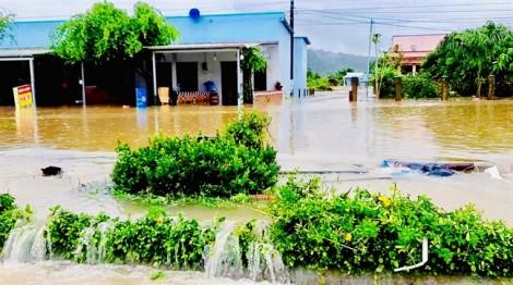 'Đảo ngọc Phú Quốc chưa bao giờ ngập như bây giờ'