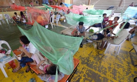 Philippines công bố đại dịch sốt xuất huyết cấp quốc gia sau hơn 600 trường hợp tử vong