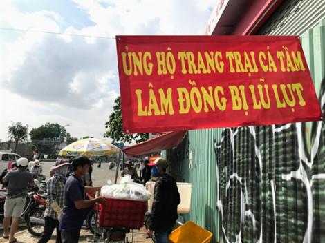 Người Sài Gòn chen chân giải cứu cá tầm Đà Lạt sau lũ lớn