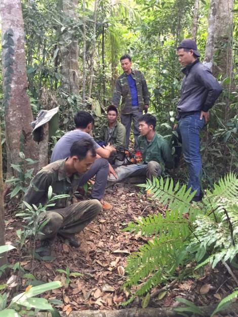 Vây bắt thôn trưởng cùng nhóm đối tượng khai thác gỗ trái phép với quy mô lớn