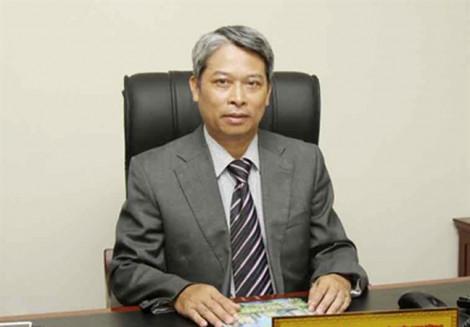 Phó Tổng cục Quản lý đất đai: 'VinGroup nói bà Hồ Ngọc Lâm tham gia với tư cách cá nhân là không đúng'