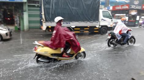 Mưa sầm sập 30 phút, hàng loạt tuyến đường Sài Gòn ngập nặng