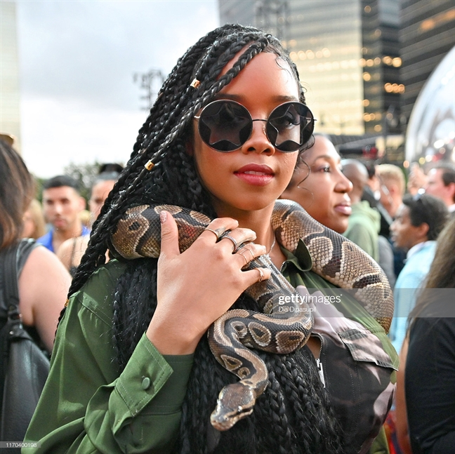 Tham do MTV 2019: Sao ho bao, tao dang lo chiem song