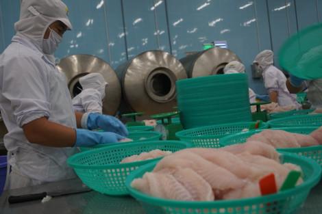 Thủy sản xuất khẩu đi châu Âu nhưng lại không đủ chuẩn vào siêu thị Việt Nam