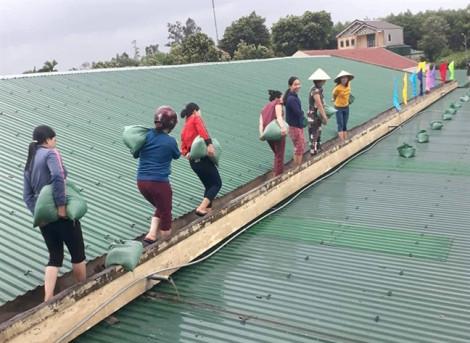 Cô giáo leo mái gia cố lớp học, công an lội ruộng gặt lúa chống bão