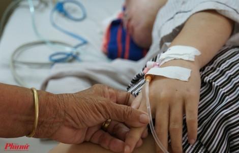 Cách chăm sóc bệnh nhân sốt xuất huyết tại nhà