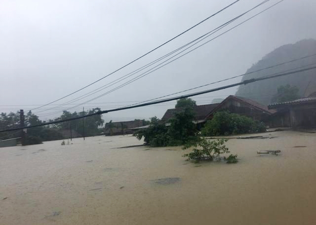 Hang tram can nha o ron lu Quang Binh ngap toi mai
