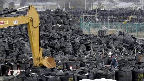 3 thực tập sinh Việt Nam khởi kiện công ty Nhật Bản vì bị buộc làm việc tại nhà máy Fukushima