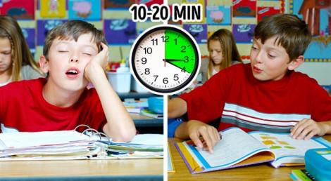 Ngủ trưa bao nhiêu phút sẽ giúp cải thiện trí nhớ và giảm cân?