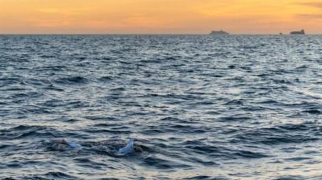 Một phụ nữ bị ung thư trở thành người đầu tiên bơi liên tục 4 lần qua eo biển giữa Anh - Pháp