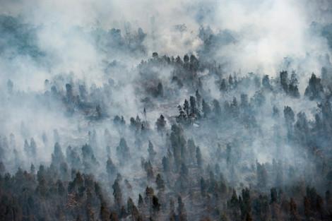 Hàng ngàn trường học ở Malaysia và Indonesia đóng cửa vì ô nhiễm không khí
