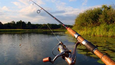 Đánh bắt cá trái phép ở Mỹ, vợ chồng gốc Việt bị quản chế 2 năm