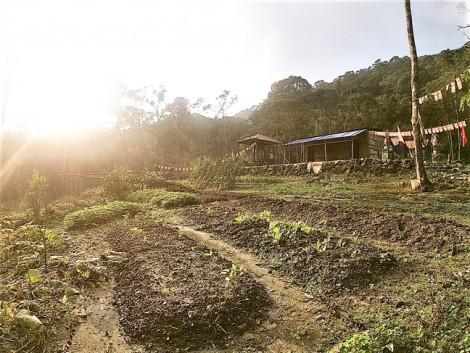 Báo cáo đánh giá tác động môi trường của dự án Tam Đảo II - có gì bí mật?