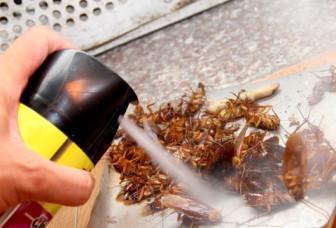 Chính sách có hiệu lực từ 1/10: Bán thuốc diệt côn trùng chung với thực phẩm bị phạt 3 triệu đồng