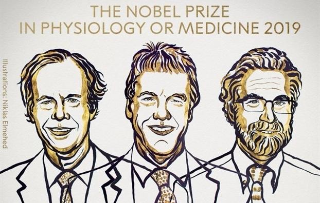 Giai Nobel Y hoc 2019 trao cho 3 nha nghien cuu ve cach cac te bao phat hien oxy