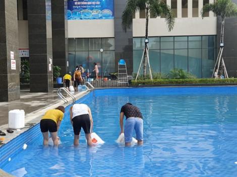 Thiếu nước sinh hoạt, người dân Hà Nội múc nước bể bơi về dùng