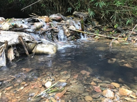 Tạm giữ hình sự 2 đối tượng đổ dầu thải gây ô nhiễm nước sông Đà