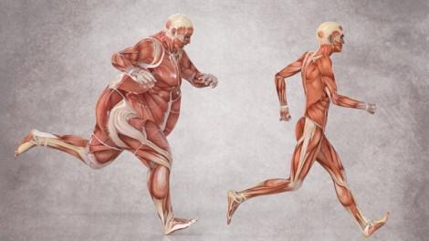 Thừa cân, béo phì trước tuổi 40 làm tăng nguy cơ ung thư ở cả hai giới