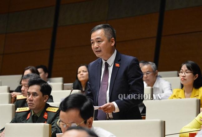 Dai bieu Nguyen Lan Hieu de nghi xem lai cac du an xe nui, pha rung