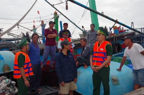 Thành phố Quy Nhơn xơ xác sau bão số 5, hàng chục tàu biển bị trôi neo ở Bình Định
