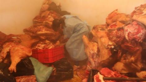 Một hộ kinh doanh trữ gần 800kg thịt heo đổi màu, bốc mùi hôi thối