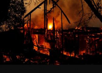 Cháy rừng ở Mỹ, biểu tình ở Iraq và chiếc bánh burger nặng hơn 6kg