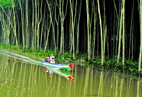 Đục khoét  vườn quốc gia Mũi Cà Mau