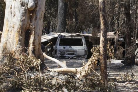 Bang đông dân nhất nước Úc tuyên bố tình trạng khẩn cấp do cháy rừng