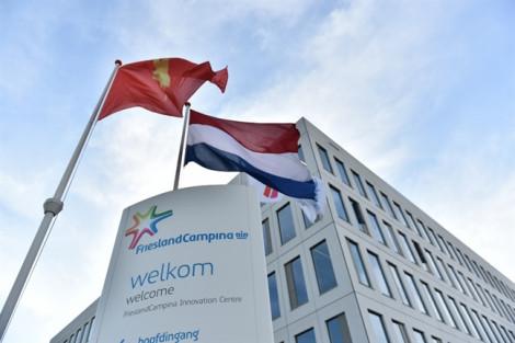 Cô Gái Hà Lan - thương hiệu sữa đầu tiên nhận huy hiệu hoàng gia